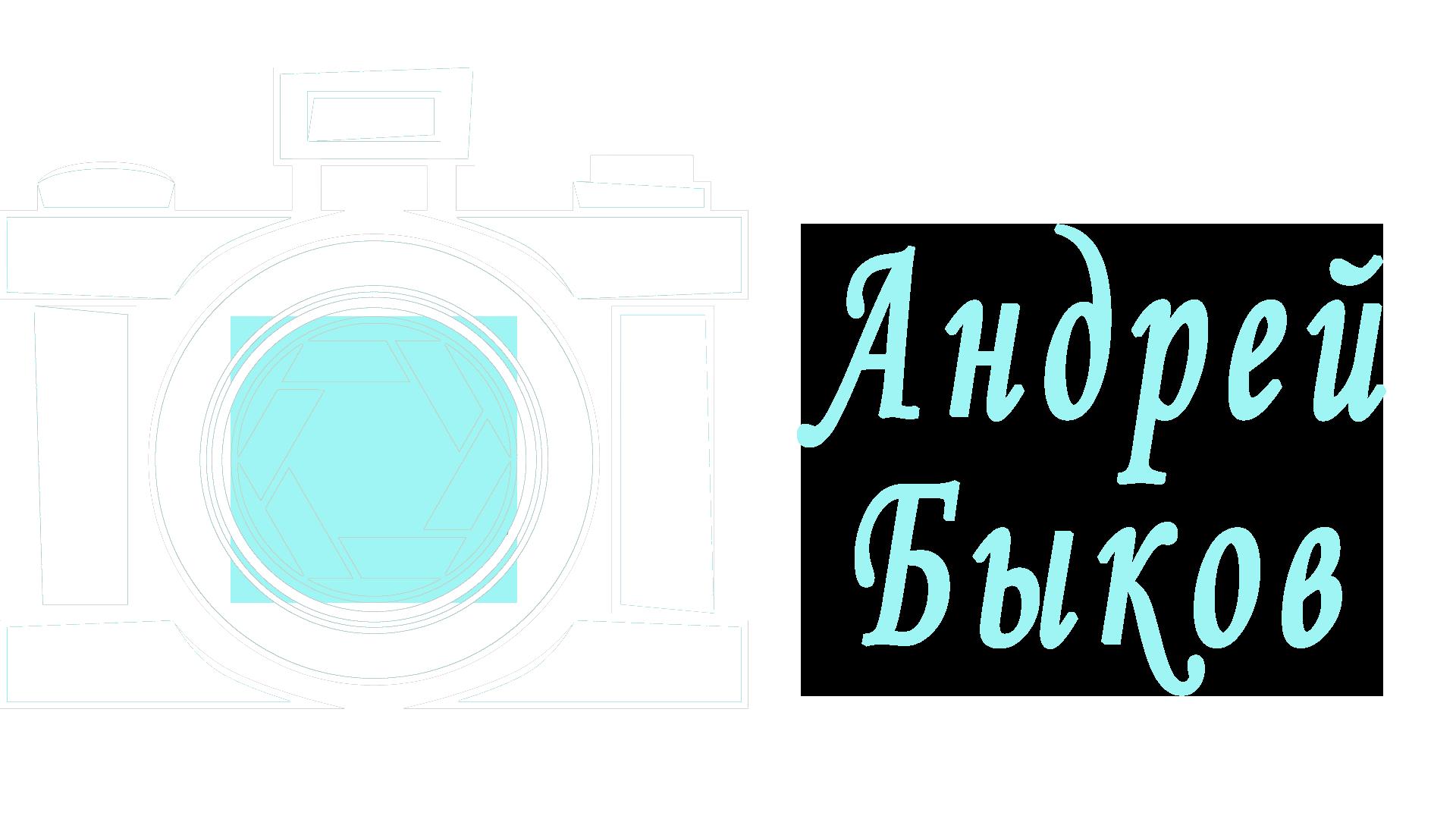Фотограф Андрей Быков
